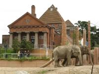 Frederiksberg zoo (zicht vanuit Frederiksberg park)