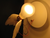 Geïntrigeerd door lampen 3