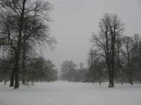 Besneeuwd Kopenhagen (Frederiksberg park)