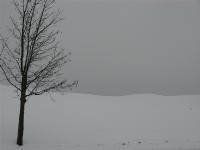 Wintertafereel