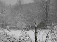 \'s-Gravenwezels sneeuwlandschap