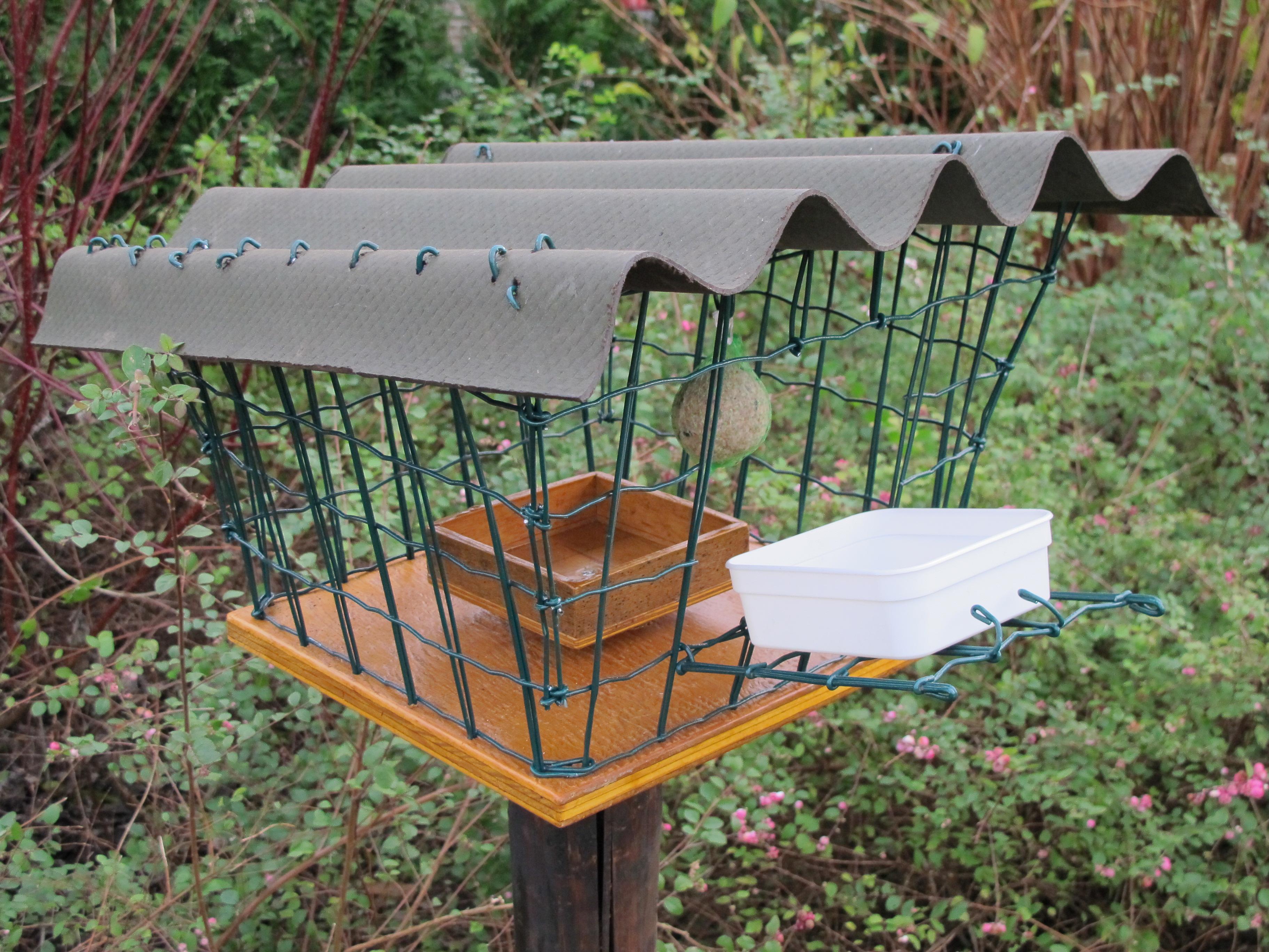 Bird feeder 5