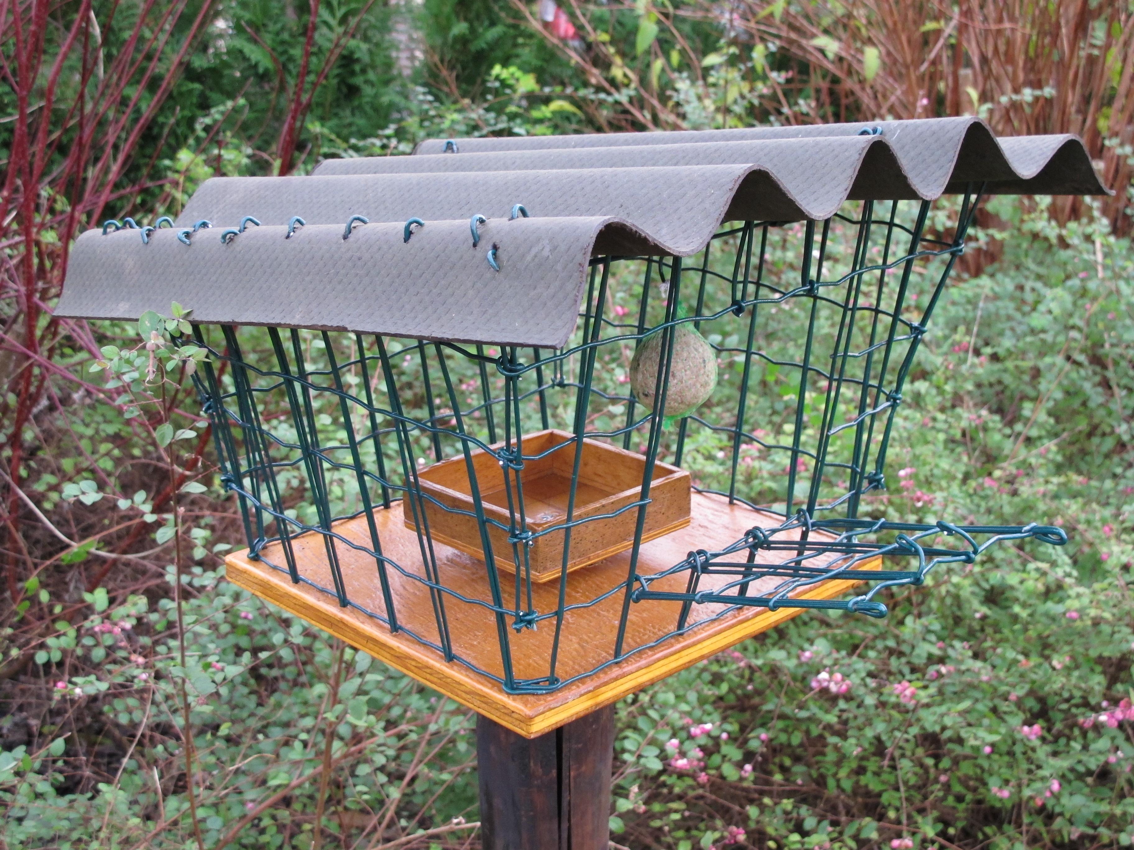 Bird feeder 6